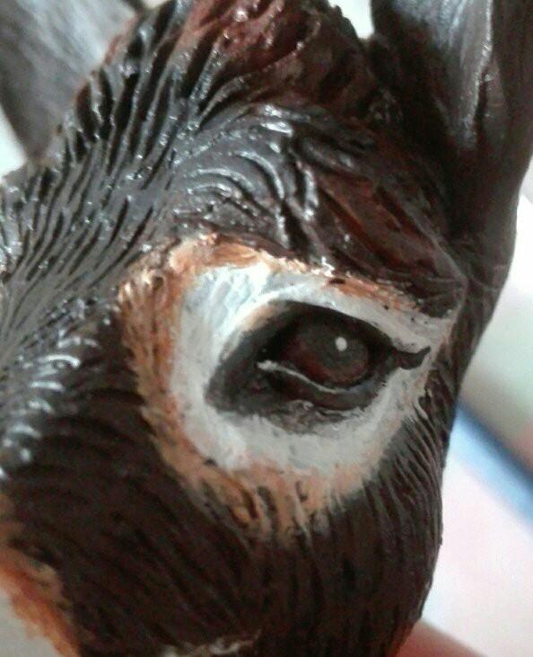 GAROU, l'âne noir du Berry