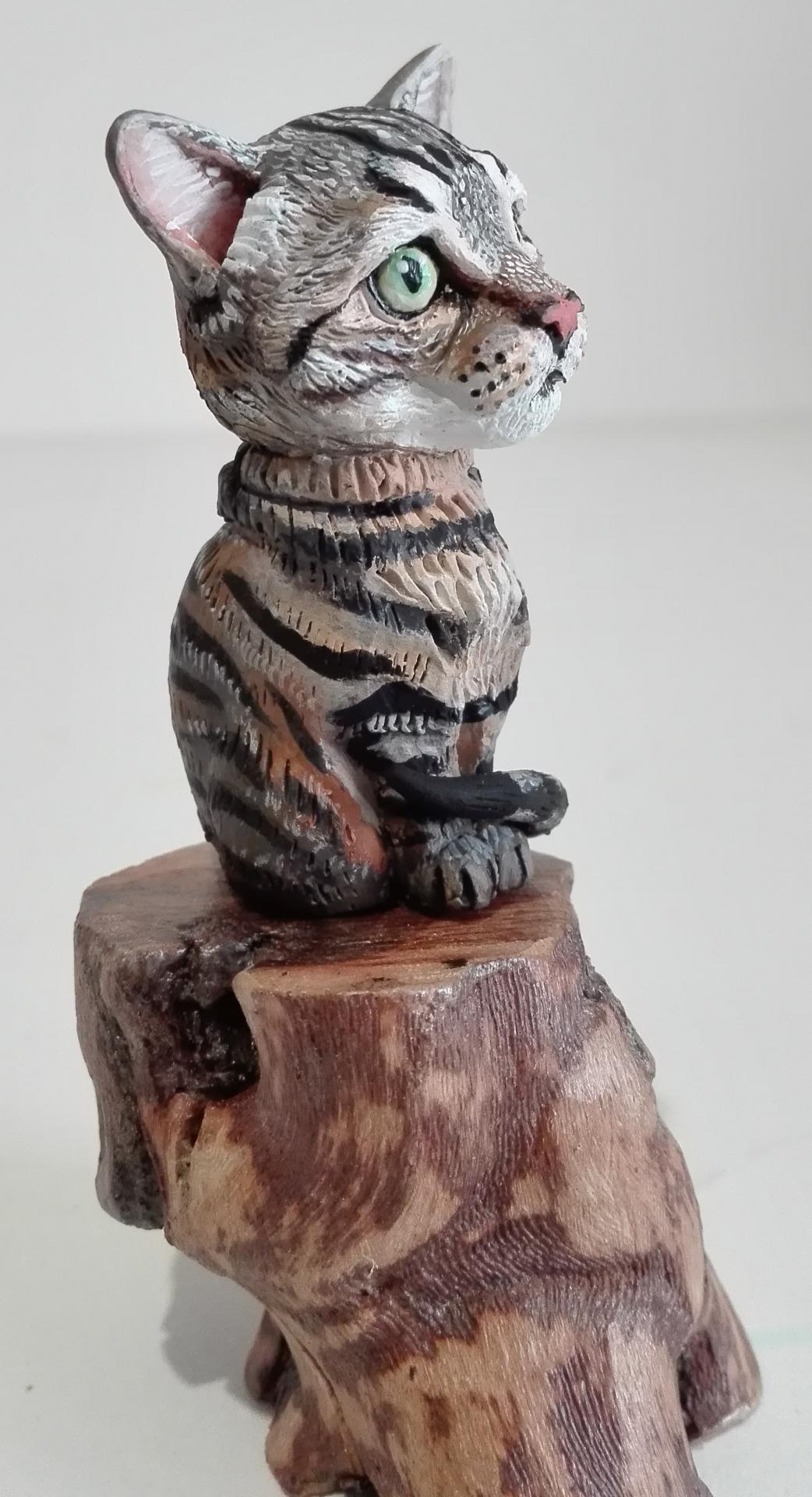 BEBE - le chat tigré